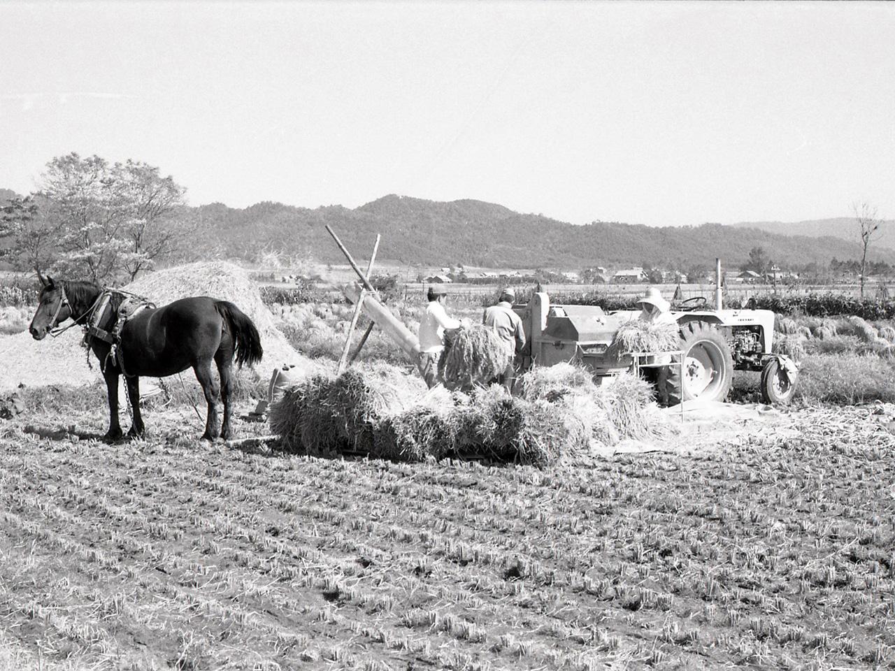 画像:沼田の農業